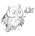 owl sitting on tree branch and looking at camera vector image vector image
