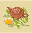 sage tea vector image vector image