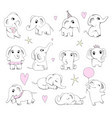 cute baelephant newborn animals sitting and vector image vector image