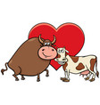 valentine card with cow and bull characters in vector image