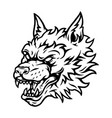 aggressive scary wolf head tattoo concept vector image