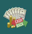 cash back concept with money vector image