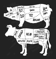 Hand drawn pork and beef cuts diagram and butchery vector image vector image