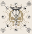 banner with hermes staff caduceus and human skull vector image