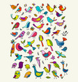 birds collection sketch for your design vector image