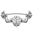 brain with strong hands brain training icon vector image