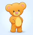 cute cuddly teddy bear standing vector image vector image