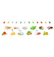 food vitamins healthy nutrition fruits vegetables vector image