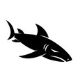 shark strength logo design isolated template vector image vector image