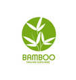 bamboo leaves with circle logo vector image