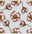 seamless pattern with hand drawn colored dog rose vector image
