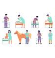 vet doctors animal patients with veterinarians vector image vector image