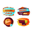 autumn sale new offer vector image vector image