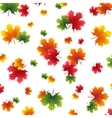 Autumn yellowed maple leaf on a white background vector image vector image