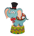 cartoon image of elephant wearing circus hat vector image