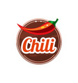 chili spice vector image