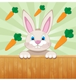 Cute baby rabbit surrounded with carrots vector image