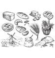 fresh bread set vector image vector image