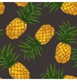 Hand drawn seamless pattern with pineapple in vector image vector image