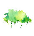 hand painter green watercolor stain texture vector image vector image