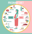 pregnant woman diet infographic vector image vector image