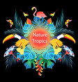 bright tropical background vector image vector image