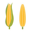 corn logo element - vector image