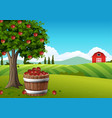countryside landscape with apple tree vector image
