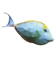 Polygonal of a tropical unicornfish vector image vector image