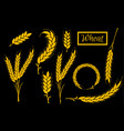 set wheat ears icons and logo organic wheat vector image vector image