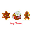 christmas gingerbread biscuit icon set cartoon vector image vector image