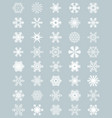 different white snowflakes vector image
