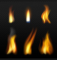 fire flame template realistic fuego effects vector image vector image