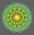 floral round design sign vintage circular pattern vector image