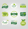 healthy food vegetable vegan logo tag bio green vector image