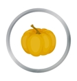 Pumpkin icon in cartoon style isolated on white vector image