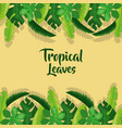 tropical leaves palm tree plant exotic frame vector image vector image