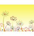 umbel flowers vector image vector image