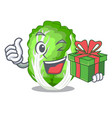 with gift cartoon fresh chinese cabbage vegetable vector image