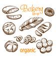 bakery set hand drawn vector image vector image