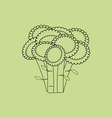 Broccoli Vegetable Icon vector image