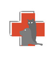 hospital logo for animals on a white background vector image vector image