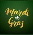 mardi gras calligraphic lettering typographic vector image vector image