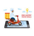safe delivery covid-19 coronavirus epidemic vector image vector image