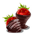 strawberry dessert in chocolate isolated vector image vector image
