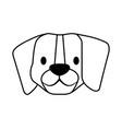 beagle dog pet on white background vector image vector image