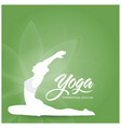 international yoda day design vector image