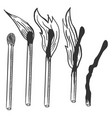 sketch set burning matches different stages vector image vector image