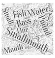 smallmouth bass fishing Word Cloud Concept vector image