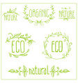 eco floral frame collection vector image